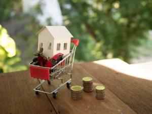 house car airplane in a shopping cart