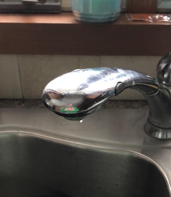 My kitchen faucet
