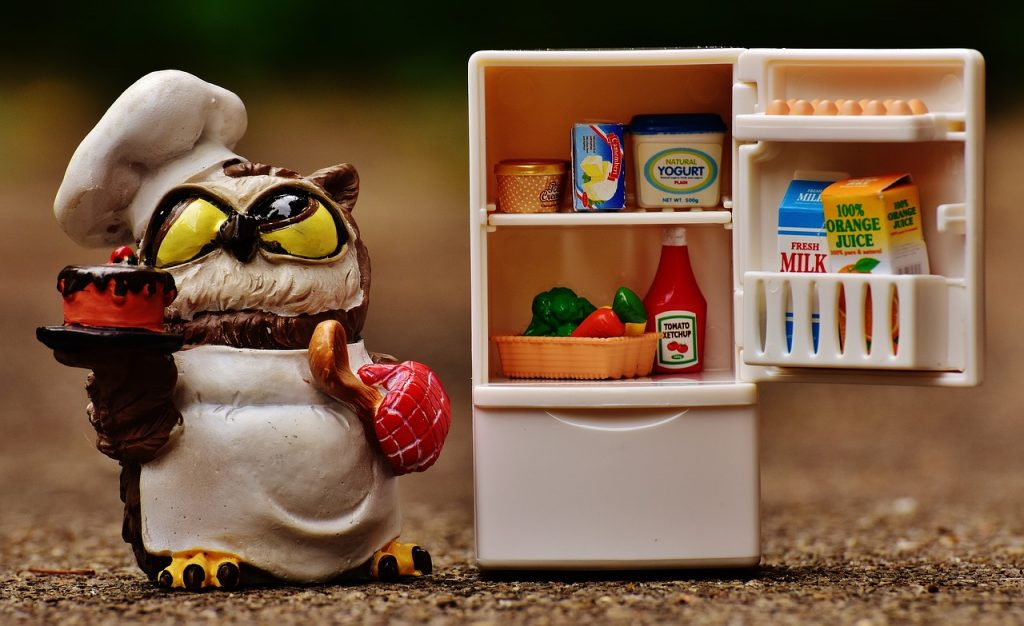 Fridge Maintenance with an owl