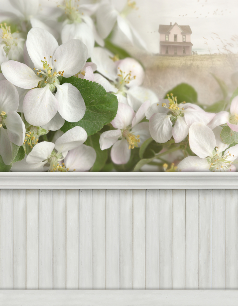 Spring wall with baseboard
